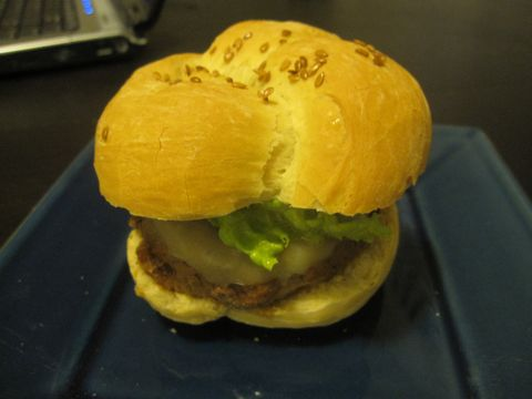 Bison Burger on Kaiser Roll